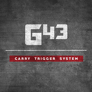 product-g43